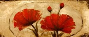 amapolas-rojas